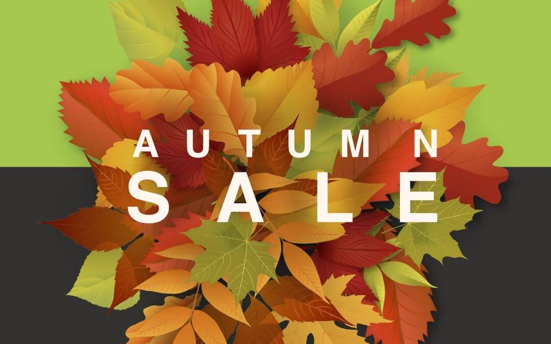 Autumn CNC Router Sale