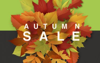 Autumn CNC Router Sale
